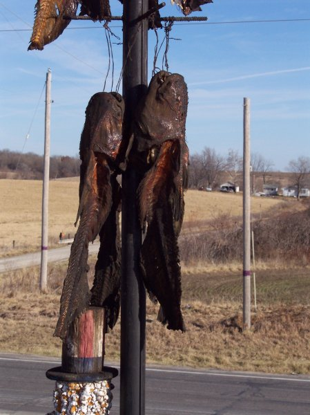 catfish-by-chariton-mo-christmas-2006-2