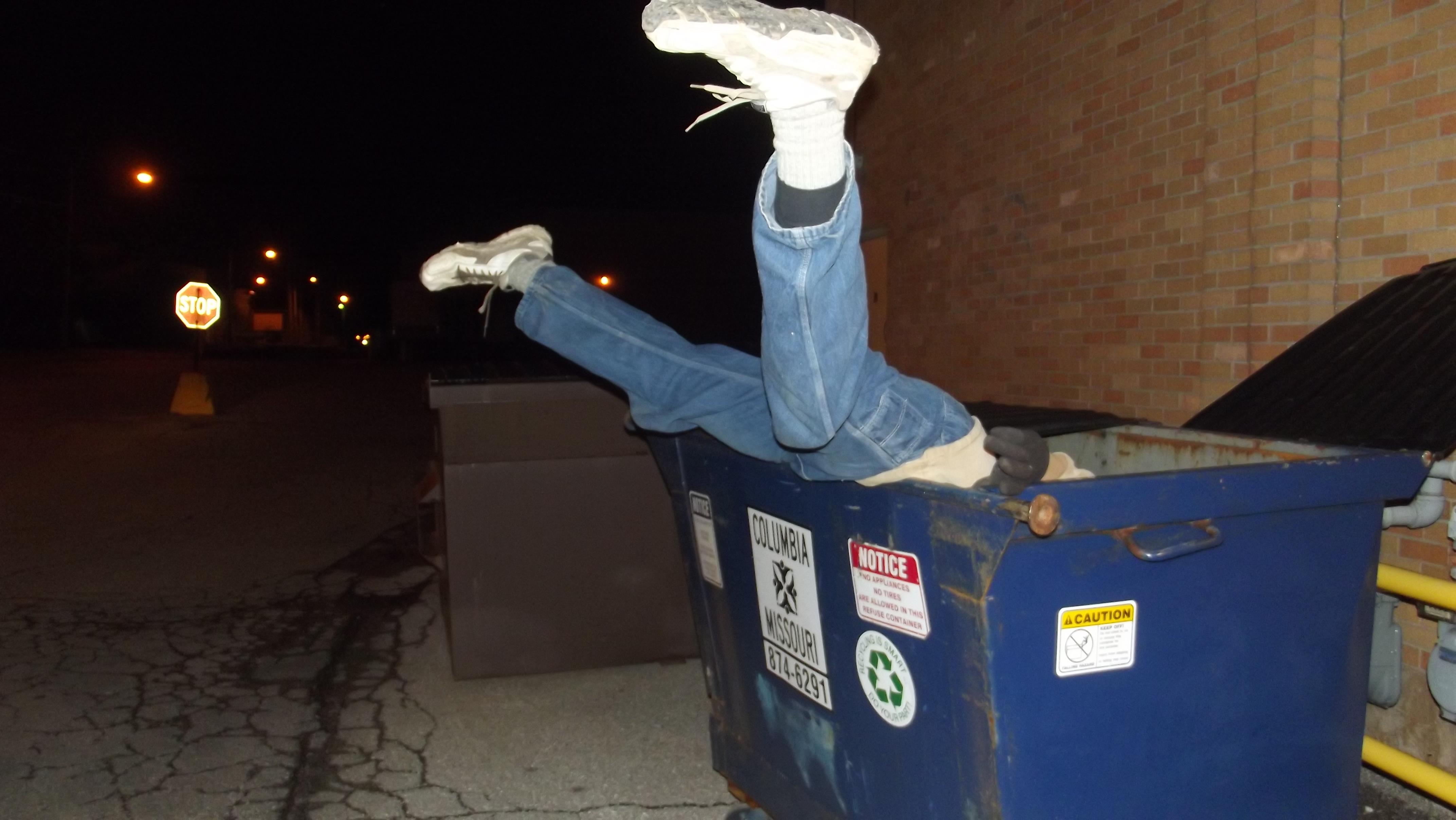 response essay on dumpster diving