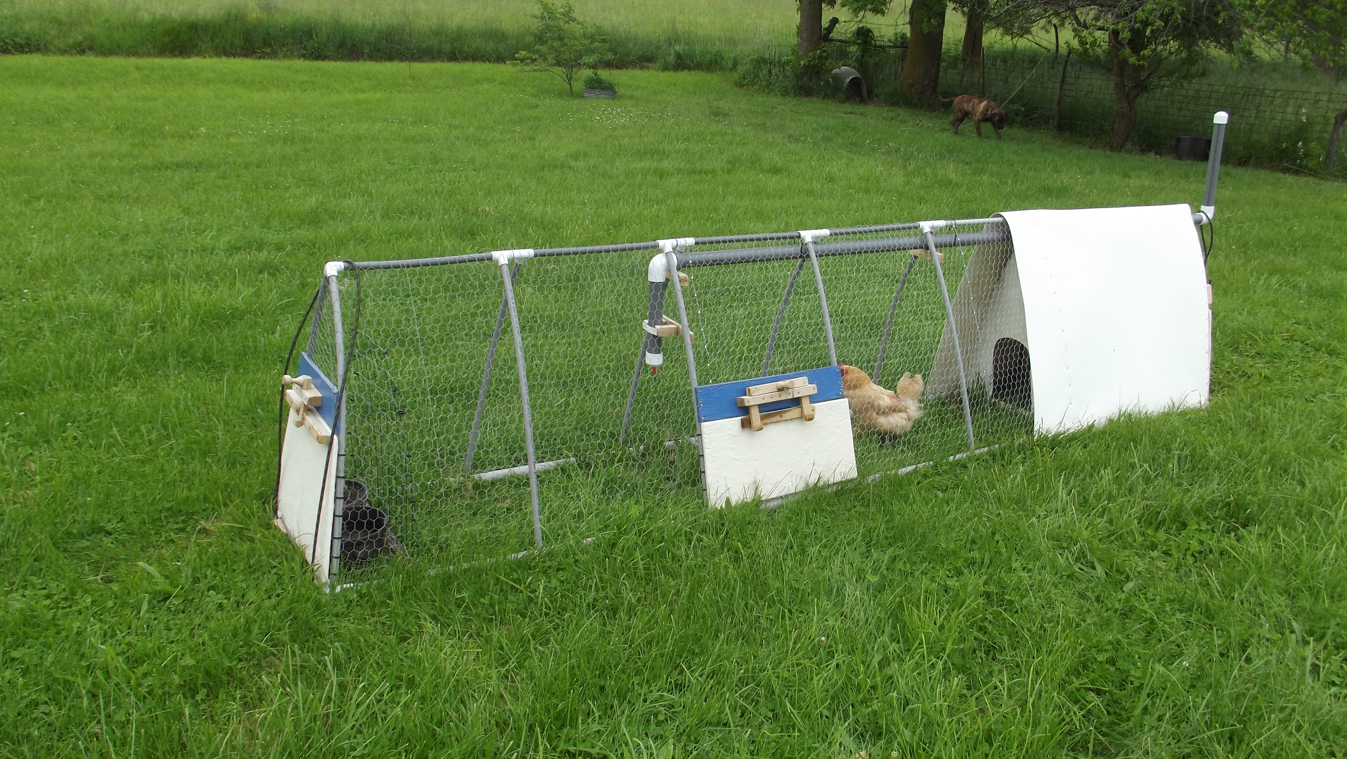 Build Pvc Chicken Tractor : The new easy to build small pvc chicken tractor row crop