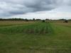 Field of Ried's Corn, 1 acre