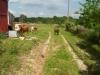 grandpas-farm-129