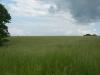 grandpas-farm-179_0