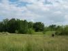 grandpas-farm-223