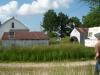 grandpas-farm-228