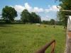 grandpas-farm-242