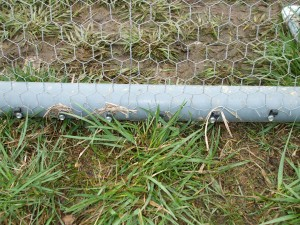 Bottom of Chicken Wire Attached to Pipe