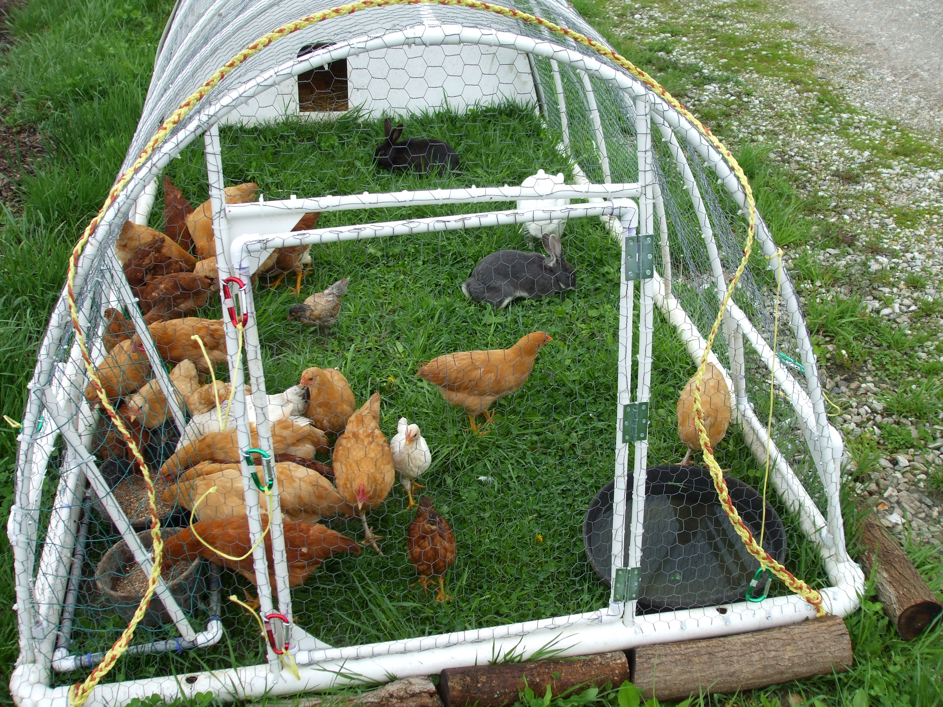 Tractor Water Pipe : Redesigned original pvc chicken tractor lewis family farm