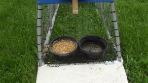 LFF PVC Chicken Tractor Raised & Fenced Off Feed Shelf