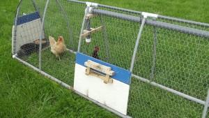 LFF PVC Chicken Tractor Cultivator Side Door
